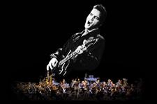 Elvis In Concert - Live On Screen